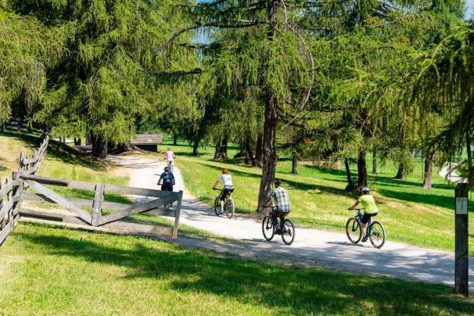 TSV Dudenhofen - Radfahren